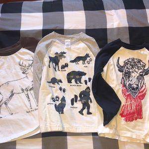 Bundle of boys long sleeve t-shirts